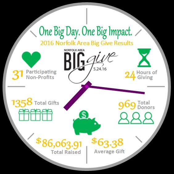 Big Give results 2016